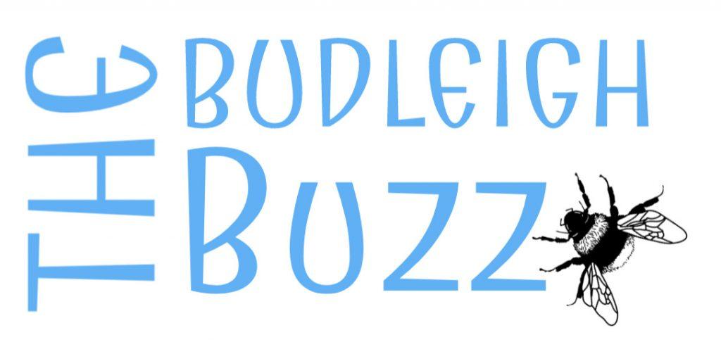 Budleigh Buzz logo